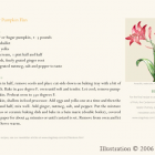 Amaryllis Illustration 1 - illustration in layout; recipe, Shannon Hughes