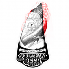 Scrimshaw Illustration Adaptation - Illustration adaptation of original by J.D. Mayhew showing areas of new artwork matching original style