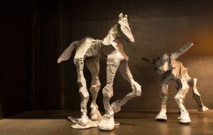 Horse-Steer Duo