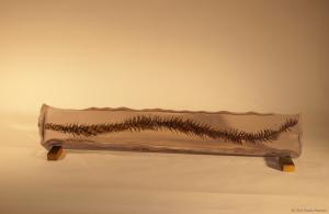 Monkey Tree Seed Pod Cast Resin Sculpture